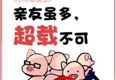 省局-《小猪哼哼一家的故事》海报3张