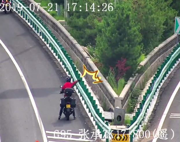 张家口:摩托车高速逆行,一样记12分!