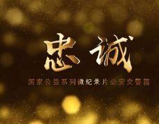 2019国庆宣传资料-忠诚系列宣传片(9个)