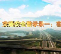 交通事故警示录短视频合集(8个)